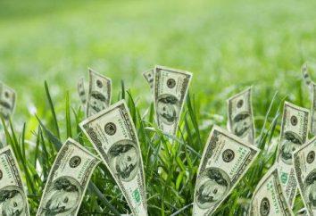 Cosa provoca l'aumento del dollaro? la crescita del dollaro: le conseguenze