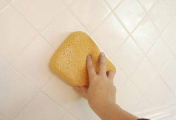 Comment essuyer les coutures sur le carreau: conseils pratiques