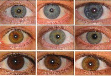 Który kolor oczu jest dziecko?