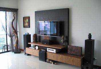 TV a schermo piatto set – un angolo accogliente in salotto