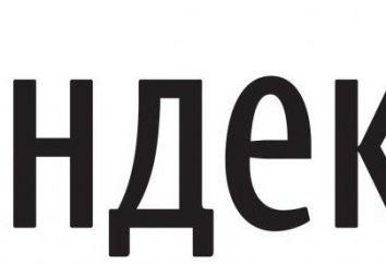 """Actualización de la base de búsqueda """"Yandex"""": cómo funciona"""