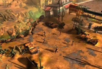 Wasteland 2: Problemi con il gioco e la loro soluzione