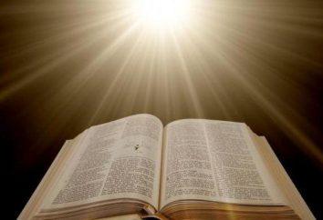 """¿Cuál es el significado del concepto de """"bueno""""? La relatividad del bien y del mal"""