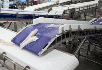 Sklep dla przetwórstwa rybnego: sprzęt, technologia