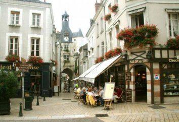 Zamek w Amboise, Francja: opis, ciekawostki, referencje i wycieczki