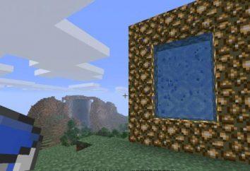 Come fare un portale verso il cielo in Minecraft: istruzioni dettagliate