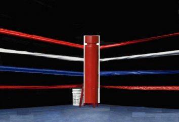 ¿Cómo elegir el anillo de boxeo?