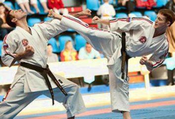 Was ist Karate tatsächlich
