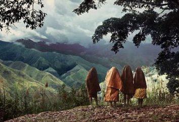Nuova Guinea (Isola): l'origine, la descrizione, il territorio, la popolazione. Dove è l'isola della Nuova Guinea?