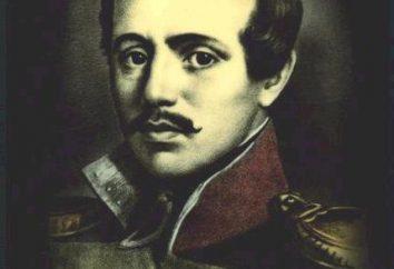 Les souvenirs et des opinions sur les grands noms Lermontov: pensées des écrivains, des philosophes et des poètes des plus brillants représentants de la littérature russe