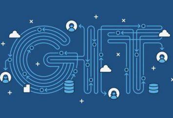 Git – co to jest? Git dla początkujących: opis