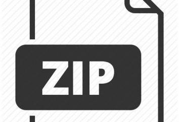 Como extrair o arquivo do arquivo zip: métodos e recomendações