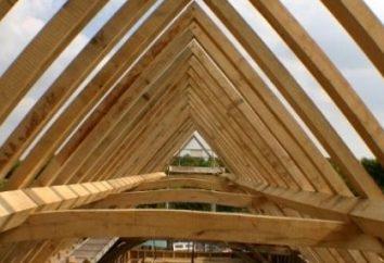 Mauerlat – was ist das Element der Dachkonstruktion?