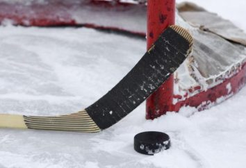 boîtes de hockey Taille: IIFH, NHL, les plates-formes nationales
