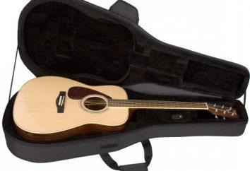 ¿Cómo elegir un estuche de guitarra?