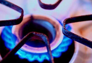 Zasad ustalania gazomierza w mieszkaniu. Wymagania dotyczące instalacji gazomierza