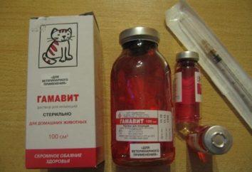 """""""Gamavit"""" cat: Wskazania i sposoby użycia"""