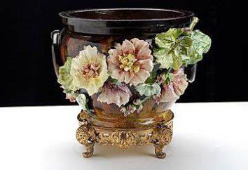 Cosa è Kashpo? Fiori per fiori