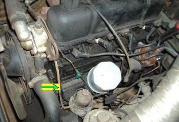 Numéro du moteur: il en a besoin?