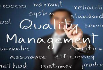 Die Grundsätze des Qualitätsmanagements. Standards für das Qualitätsmanagement-System nach ISO 9000