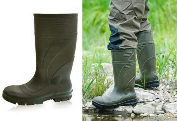 """Boots """"LEMIGOV"""": descrizione e recensioni"""
