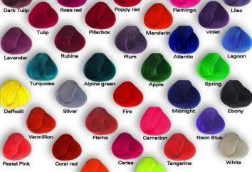 Indications Hair Dye: Mode d'emploi et commentaires