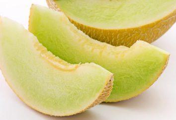 """Melon """"Torpedo"""": calories, l'utilisation, la culture"""
