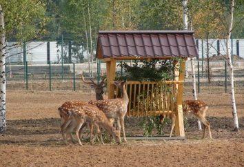 Kilka powodów, aby odwiedzić Yaroslavl Zoo