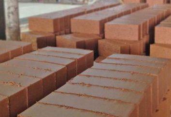 idea di business: la produzione di mattoni. Tecnologia e impianti per la produzione di mattoni