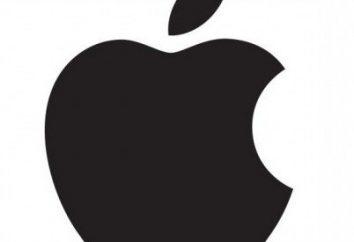 Cellular – co to jest, na iPadzie i jaka jest różnica