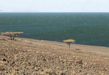 ¿Dónde está el lago Rudolf? Foto y descripción