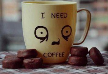 """Rating """"Coffee Home"""": panoramica, descrizione dei tipi, produttori e recensioni"""