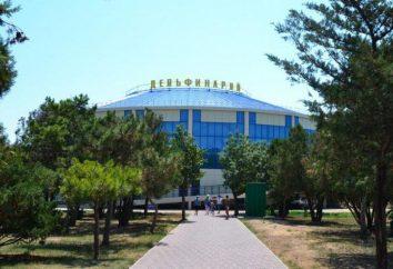 Delfinarium Evpatoria: program prezentacji, zdjęcia i recenzje
