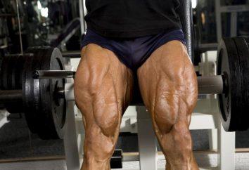 Doskonała izolacja – przedłużenie ćwiczenia nóg w symulatorze, a także nogi zwijają
