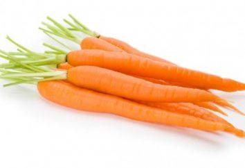 Sobre o que sonha uma cenoura? Nós aprendemos!
