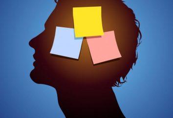 Pamięć społeczna: definicja, cechy, przykłady