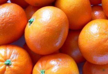 Che cosa è Clementine? proprietà utili, clementine composizione calorico