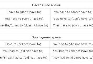 Le verbe dans la langue anglaise avait