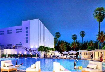 Pullman Pattaya G Hotel 5 * (Thailandia / Pattaya): recensioni, foto