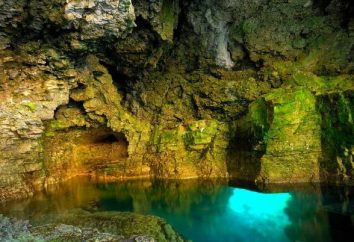 Lassen Sie uns herausfinden, was die Grotte