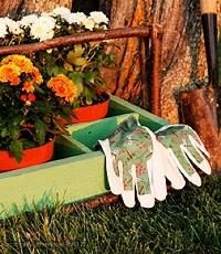 Garten Secrets: Herbst Arbeit im Garten und der Garten