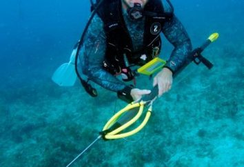 Unterwasserpistole: Vor-und Nachteile