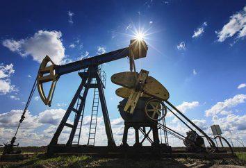 Grandes empresas modernas de petróleo y gas en Rusia