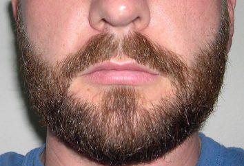 Jak przyspieszyć wzrost brody? Wskazówki i sztuczki