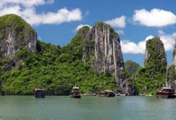 Caractéristiques de vacances: Vietnam en Juillet