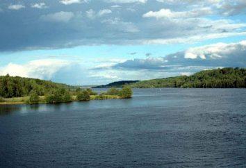 Svir río: la pesca, la foto y la historia