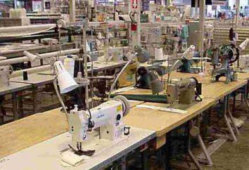 Maszyny do szycia przemysłowe: opinie, opisy, klas, funkcji i opinie