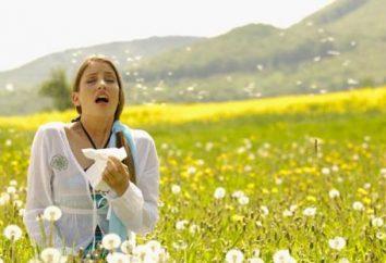 Un bon remède pour les allergies – est-il?