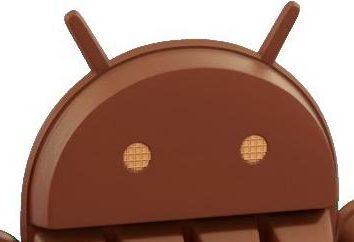 Jak usunąć pulpit na Androida? Jak przywrócić pulpit na Androida?