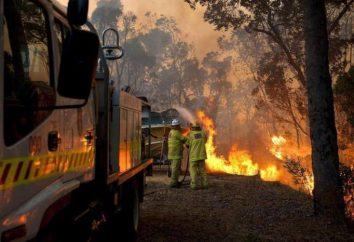 L'eliminazione del fuoco – questo è il lavoro armonico dei vigili del fuoco